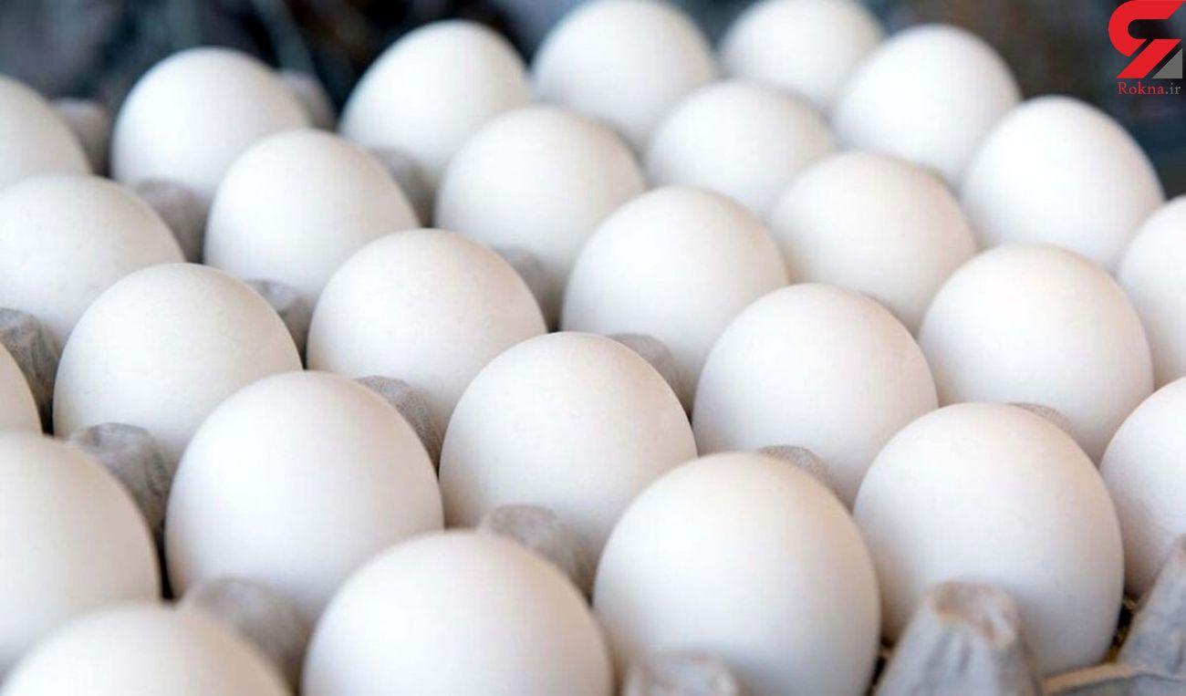 وضعیت قیمتی تخم مرغ در بازار هنوز بلاتکلیف است