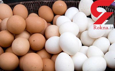 منابع سرشار از پروتئین