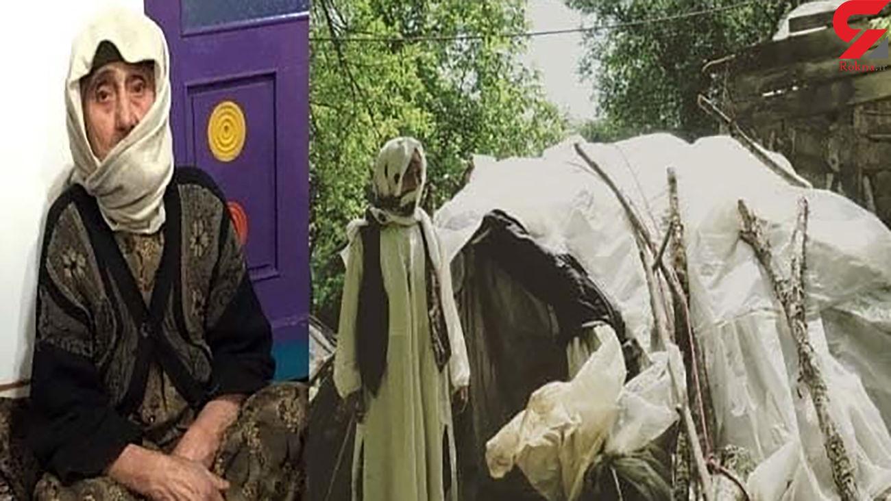 مادر بزرگ ایرانی جهانی شد + عکس