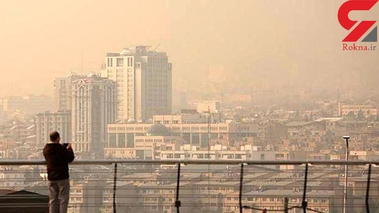 ماجرای فرار دهها گونه پرنده از تهران به علت آلودگی هوا