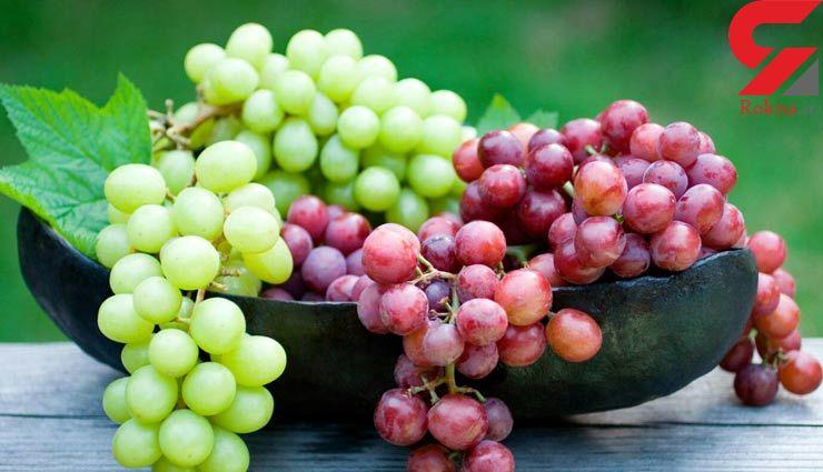 مبارزه با سرطان با هسته انگور