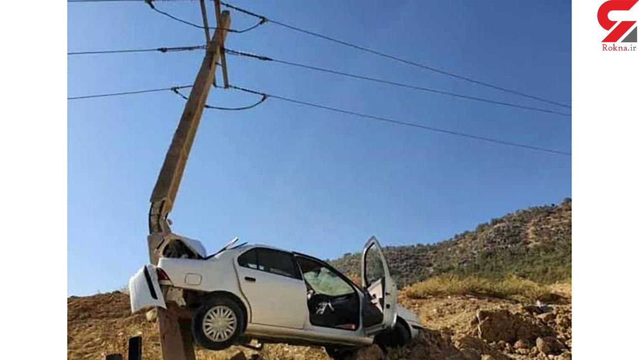 عکس عجیب از سمندی که برق 2500 خانواده را در یاسوج قطع کرد