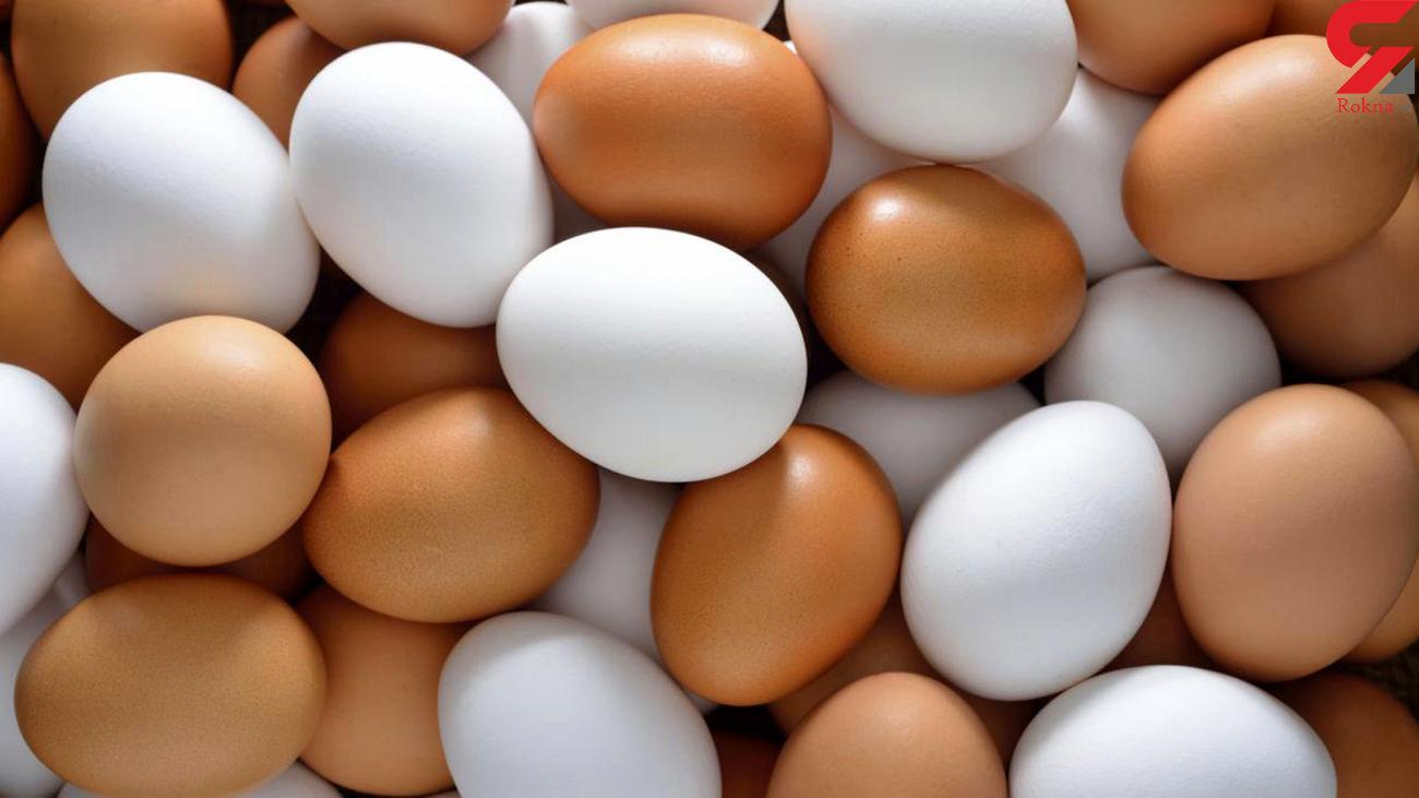 قیمت هر شانه تخم مرغ کاهش یافت