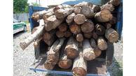 دستگیری 4 قاچاقچی چوب در اهر و هوراند