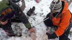 عکس های دردناک از خارج کردن اجساد مسافران هواپیما آسمان از زیر برف درقله دنا 16+