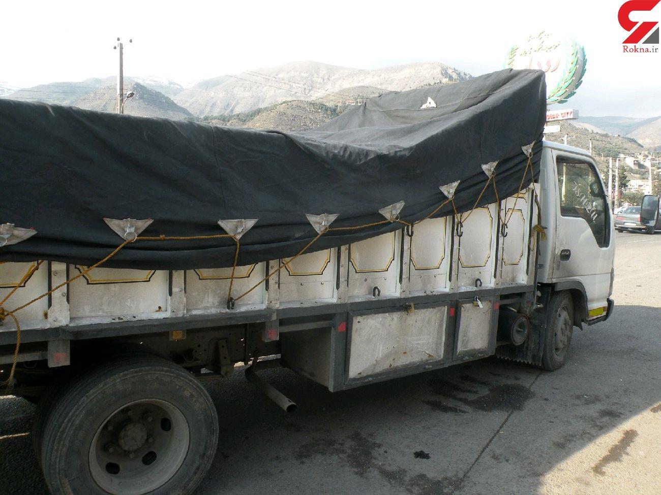 توقیف 6 دستگاه کامیون حامل بیش از 7 هزار قطعه مرغ فاقد مجوز در رودبار