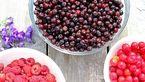 بخور و نخورهای غذایی برای بیماران نقرسی