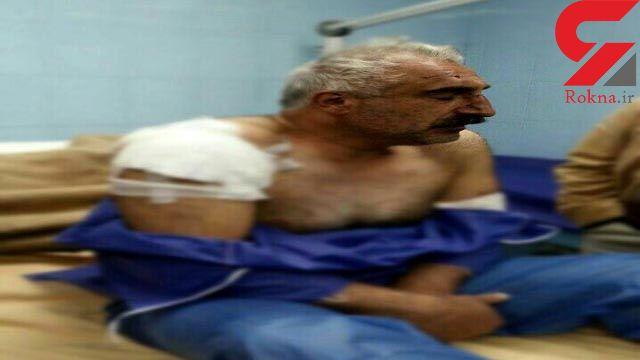 پلنگ ایرانی  مرد شمالی را تکه و پاره کرد ! + عکس دلخراش