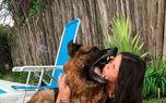 لحظه خوردن صورت دختر نوجوان توسط سگ وحشی / سلفی خونین+عکس
