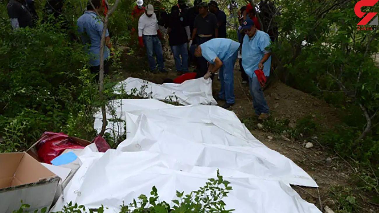 کشف گور دسته جمعی با 59 جسد در منطقه جنگلی +  عکس