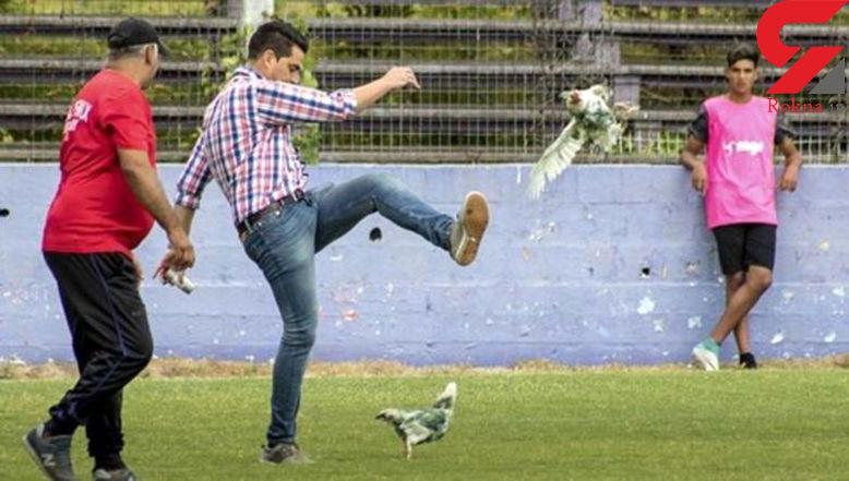 لگد زدن به مرغ برای بازیکن کرواسی دردسر آفرید