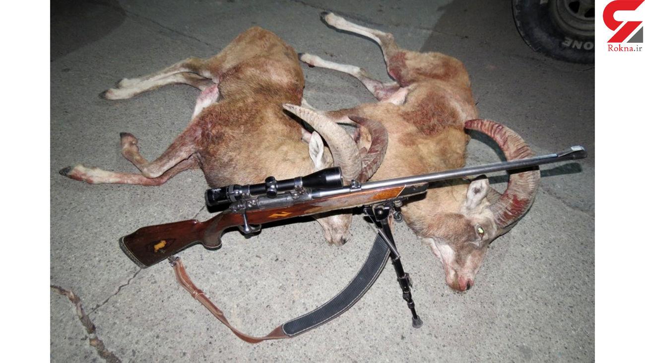 دستگیری شکارچی غیر مجاز در قاین