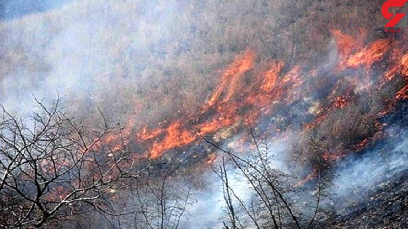 مهار آتش در جنگلهای کنار خنج