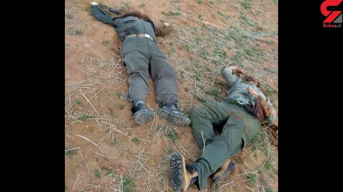 2 بار اعدام برای قاتل محیط بانان زنجانی + عکس های وحشتناک جنازه های خونین