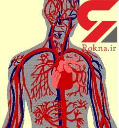شایع ترین بیماری های گردش خون