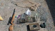 نجات 9 بال سهره طلایی از چنگال شکارچیان در الموت قزوین