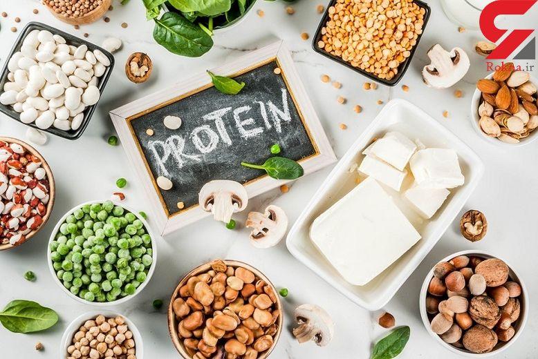 گزینههای پروتئین خوراکی براس وخت وساز بدن را بشناسید